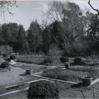 Blake Garden, Rose Garden 2