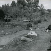 Blake Garden, Rose Garden 3