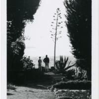 Blake Garden: Cut flower look out, facing west