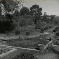 Blake Garden, Rose Garden 1