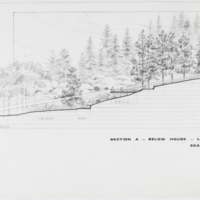 Blake Estate: Long Range Development Plan, Section A - below house looking north
