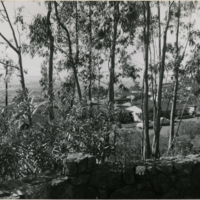 Blake Garden, Lookout point 2