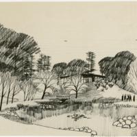 Blake Estate: Long Range Development Plan, pond sketch