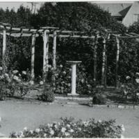 Blake Garden, Rose Garden 7