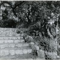 Blake Garden, Steps 1