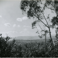Blake Garden, Lookout point 1
