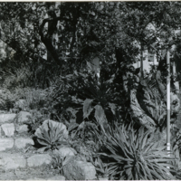 Blake Garden, Steps 3