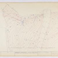 Blake Garden, Topo Survey: 1