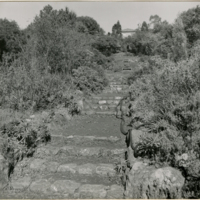 Blake Garden, Steps 2